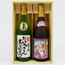 名入れ日本酒ギフト 名入れ 日本酒 越後鶴亀 招福神 純米吟醸と高野酒造 名入れ辛口純米酒720ml×2本 プレゼントギフトセット 送料無料