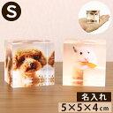 フォトキューブ 【ペット位牌】【ペット仏具】写真をモニュメントに・・『メモリアルキューブS』アクリル透明 カラー クリスタル のような 位牌 ペット仏壇 ペット 仏壇 きれい かわいい 写真立 フォトフレーム 位牌 記念 形見 メモリアル