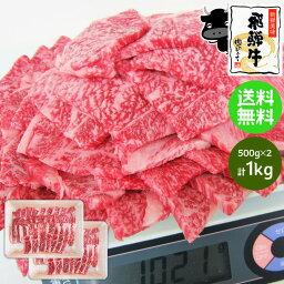 肉セット 《メガ盛り》 飛騨牛 牛カルビ 焼肉用 500g×2パック(合計1kg) 送料無料1キロ 1kg カルビ 焼肉 BBQ バーベキュー 食材 ブランド 和牛 牛肉 お取り寄せグルメ ギガ盛り テラ盛り