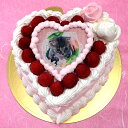 オリジナル写真のデコレーションケーキ 写真ケーキ スイートハート ケーキ バースデーケーキ お誕生日 パーティー 記念日 サプライズ 5号