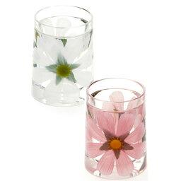 グラス 【アートフラワー】ポット/タンブラー/水飲/グラス/マグカップ/カップ【メール便不可】