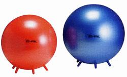 バランスボール 【Wアクションポンププレゼント】シッティング・ジム65B(バランスボール 65cm)