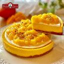 ニューヨークチーズケーキ マンゴーチーズケーキ【7月限定・送料無料】