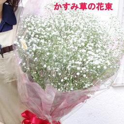 ボリュームたっぷり花束 かすみ草・カスミソウ・花束 ボリュームいっぱい プレゼント ギフト 写真 誕生日