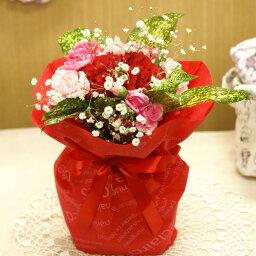 鉢 【送料無料】そのまま飾れる!カーネーションのスタンディングブーケ(生花)(ピンク系)FL-MD-301【フラワーアレンジ/誕生日/アレンジ/贈り物/プレゼント/母の日/父の日】