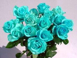 """青 """"アイスブルー""""青いバラ 青バラ 生花 誕生日の花/新築祝い/開店祝い/お見舞い【結婚祝い】【誕生日】【花】【楽ギフ_包装】【楽ギフ_メッセ入力】プレゼントに"""
