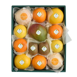 千疋屋のフルーツ 【送料込】千疋屋総本店(せんびきや)季節の果物詰合(3) 化粧箱入
