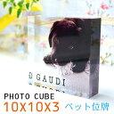 フォトキューブ 母の日 プレゼント 早割 ペット フォトキューブ 10×10×3センチ 犬 記念写真 猫 遺影 ペット 写真入り プレゼント フォトフレーム 写真立て