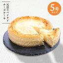 ベイクドチーズケーキ お中元 プレゼント スイーツ 天空のベイクドチーズケーキ 5号 送料無料 ひんやり濃厚レモンスフレフロマージュ 人気のお取り寄せ お菓子