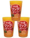 ゼリー 匠が推す 沖縄マンゴーゼリー 450g×3個 【北海道物産 フルーツ日和】