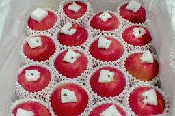"""りんご 青森産 陸奥(むつ)りんご5kg 大玉 14〜16個入り○店長おすすめ果物です高い芳香と豪華な外観が魅力の""""キング・オブ・アップル""""!お取り寄せとなりますためお時間頂戴することもあります"""