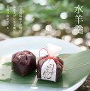 ようかん 水羊羹5個入 北海道産小豆使用 京都 和菓子 京菓子 ギフト お土産 手土産