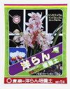 デンドロビウム 【送料無料】【東商】洋らん培養土 10L 5袋セット