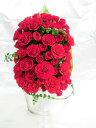 60本の赤いバラ 60本の赤いバラ RED ROSE/プリザーブドフラワー