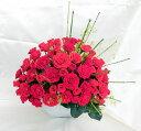 60本の赤いバラ 60本の赤いバラ RED ROSE OOGI 和モダンテイスト/プリザーブドフラワー