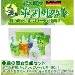 キッチン用ギフトセット 緑の魔女ギフトセット(中) 洗剤 パイプクリーナー エコ 食器 風呂 キッチン トイレ