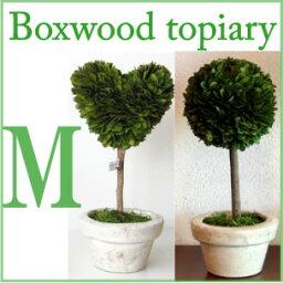 ボックスウッドピアリー BOX WOOD TOPIARY M ボックスウッドトピアリーM Heart Ball M クリスマス/プレゼント DULTON ダルトン クリスマスパーティー