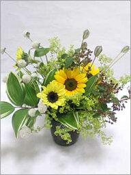 グラス 大人の向日葵ドイツ製ガラスの器に和風の花【生花】【フラワーアレンジメント】花と器・和の花