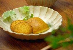益子焼き kinari 輪花(リンカ・りんか)大皿(大) 煮物皿やパスタ皿 カレー皿にもぴったり! 陶器の里 益子焼き窯元から 和食器の器をお届け 送料無料!和でも洋でもどちらにも使えるシンプルデザイン。