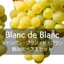 ワイン飲み比べセット シャンパン、ブラン・ド・ブラン飲み比べ3本セット【ワインセット】
