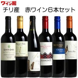 チリワイン ワイン セット 【送料無料】 <第41弾> チリワイン6本セット(赤6本)★  【smtb-T】 赤S
