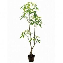 バキラ 人工観葉植物 バキラ6F 高さ180cm fg12100 (代引き不可) インテリアグリーン 造花