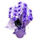 3本 【満開】胡蝶蘭 大輪 パープルエレガンス 紫 3本立ち 21輪