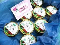 アイスクリーム オーガニックアイスクリーム■お誕生日おめでとうギフト梱包【国内産・有機牛乳・有機卵】甘さ控えめ有機JAS安全無農薬アイスクリームバニラ8個セット