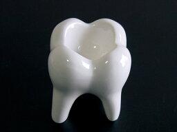 歯の灰皿 インテリア雑貨 おもしろ雑貨 歯の灰皿 デンタルトレイS